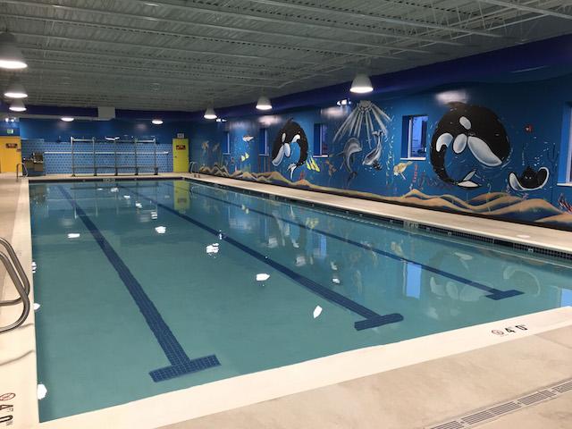 Custom Commercial Swimming Pool Design Amp Installation